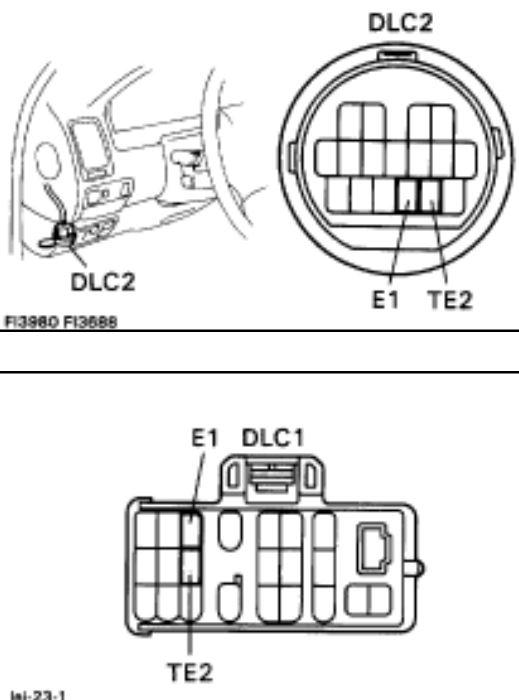 DLC-1-2.JPG