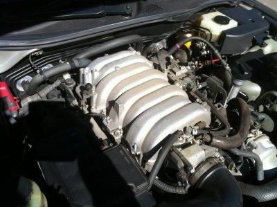 58d97303ef7d9_Motorraum-Vorher-4.thumb.JPG.a1f70719dc184d3664bb6d2ff949557b.JPG